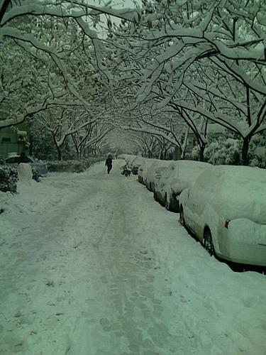 Hangzhou_Snow_2.jpg