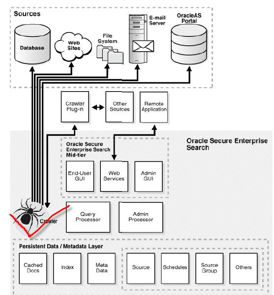 Oracle SES 架构